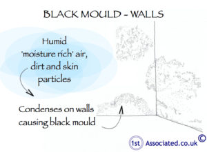 Black mould_wall
