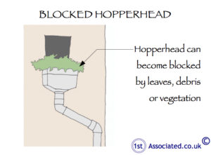 Hopperhead blocked
