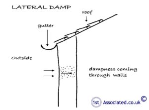 Lateral damp