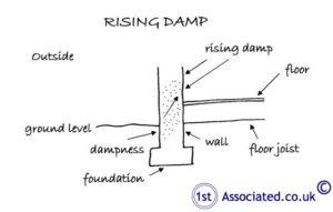 RisingDamp