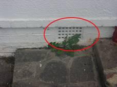 dampness-condensation