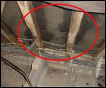 Circle shows damp in the roof space