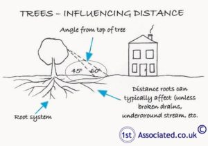 trees influencing distance